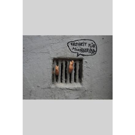 True Rebel Postcard Himbeer Pepe