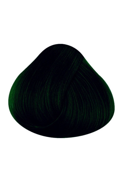 Directions Haircolour Ebony