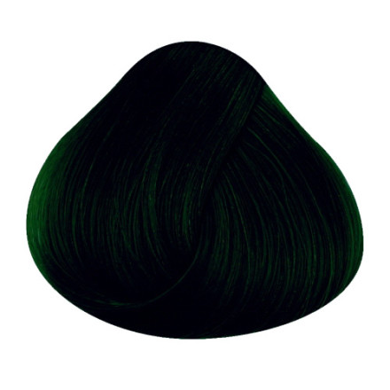 Directions Haircolour Ebony